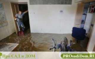 Акт о затоплении квартиры и сроки его составления