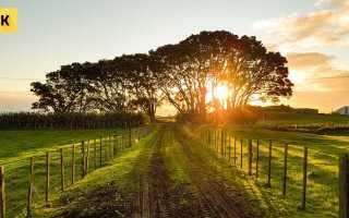 Как самостоятельно продать земельный участок?