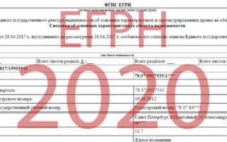 Выписка из ЕГРН: стоимость за предоставление сведений в 2020 году