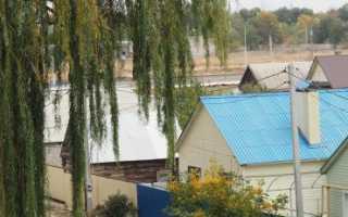 Договор аренды жилого дома с земельным участком образец