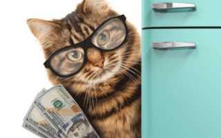 Имущественный налоговый вычет при покупке квартиры: как получить?
