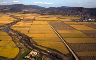 Назначение земельных участков – виды и категории