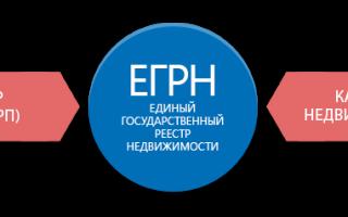 Заказать выписку из ЕГРП онлайн из Росреестра