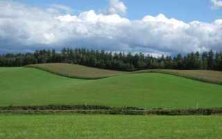 Безвозмездное пользование земельным участком срочное